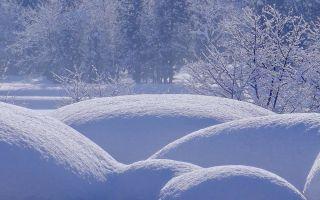 К чему снится зима во сне: значение в сонниках