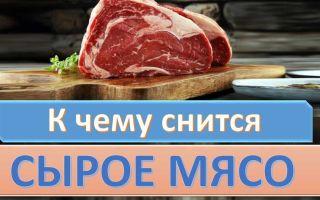 К чему снится сырое мясо или мясо с кровью во сне: расшифровка