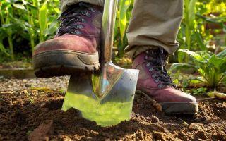 К чему снится Копать Землю во сне 😴, сонник — приснилось рыть землю лопатой