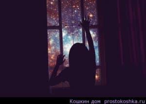Изображение-6
